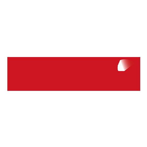 Safebridge Logo dark