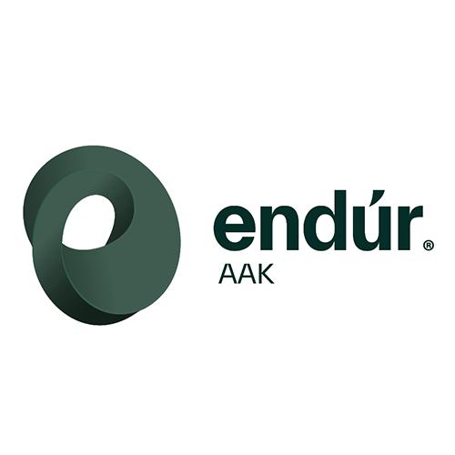 Endur logo dark
